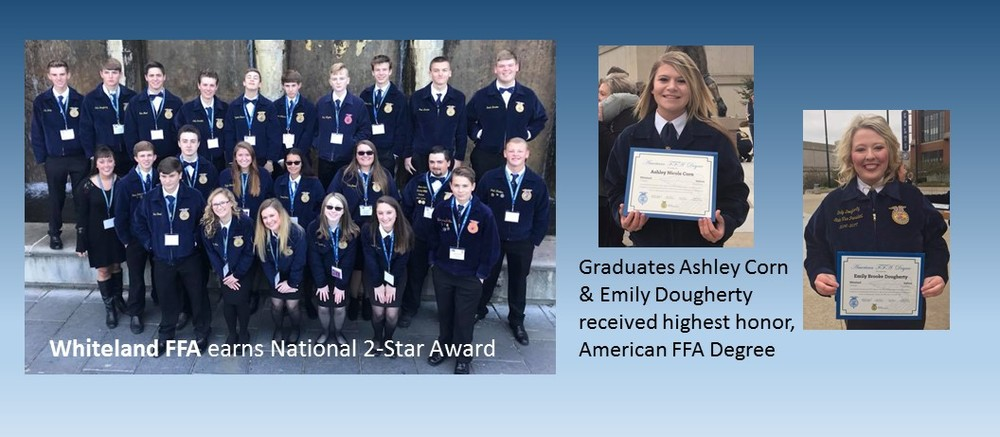 FFA Earns Honors at National Convention